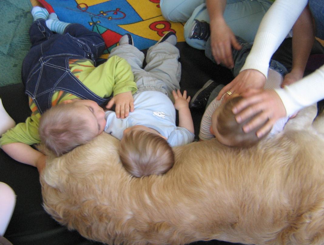 pies i dzieci w terapii
