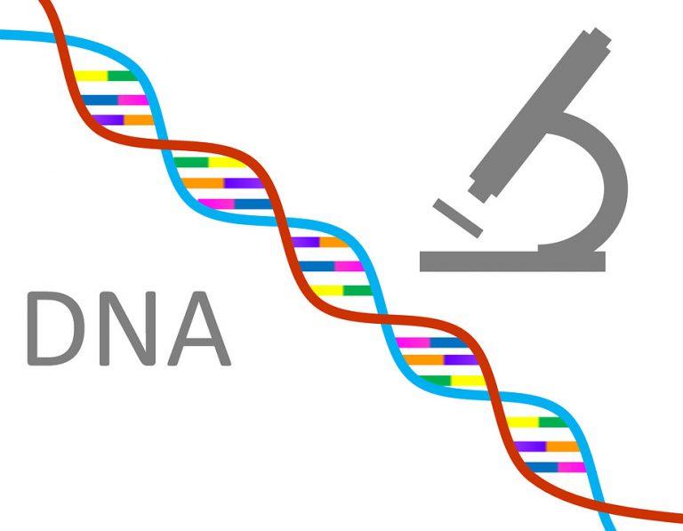 genetyka badania