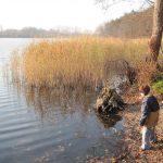 jezioro ciechomickie